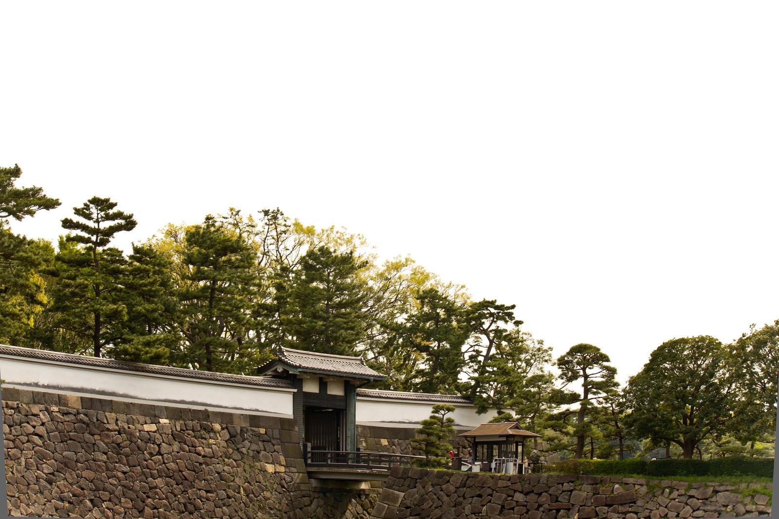東京のパワースポット〜皇居に行ってきました