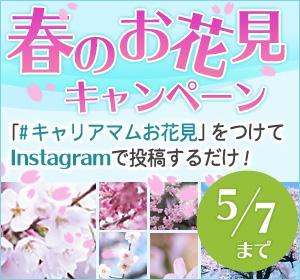 「#キャリアマムお花見」で春のお花見キャンペーン