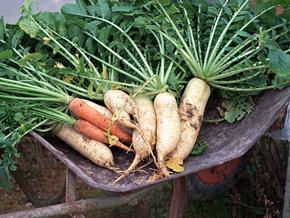 野菜の芯や皮をつくねに