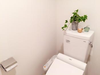 残った炭酸水でトイレ掃除