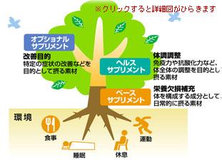 column01-03.jpg